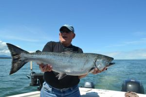 A nice May Chinook Salmon