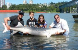 Vancouver Sturgeon Fishing